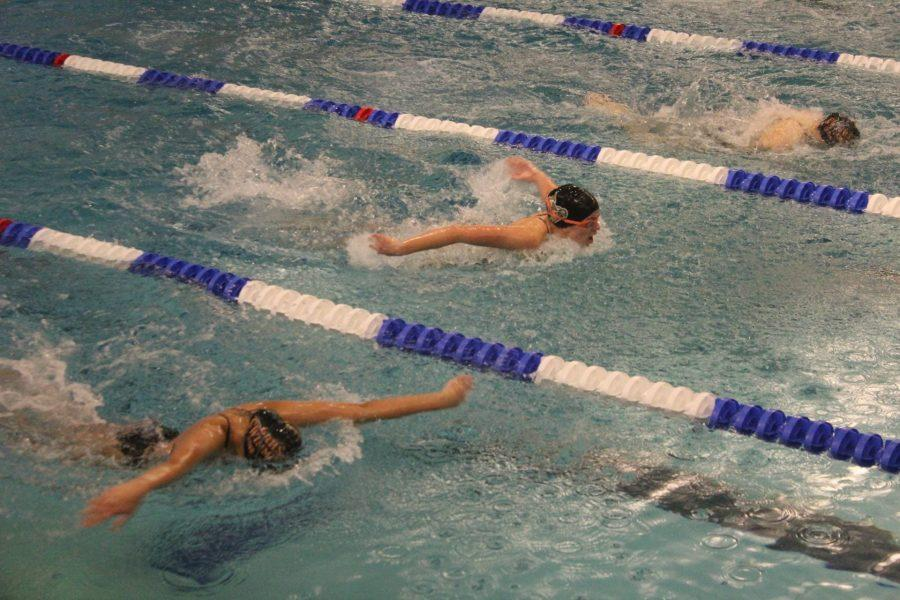 Two swimmers competing head-to-head in the butterfly stroke.