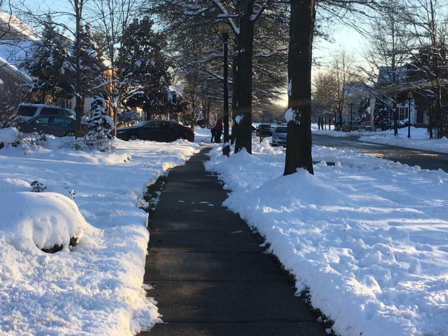 A snowy Tuesday, after the sidewalk are cleared.