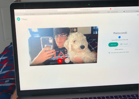 Senior, Alex McMillan, is joined by his new furry family member while working on online school work. Photo provided by Alex McMillan.